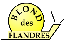 Blond_des_Flandres_1